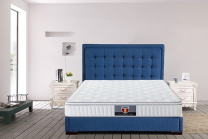 3 Velocity Plus Husky spring coils euro Pillow top mattress 4